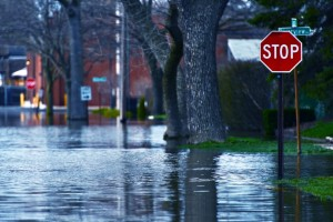 Your Administrative Role in Disaster Recovery Planning
