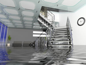 Disaster Preparedness Profile: Office Flood